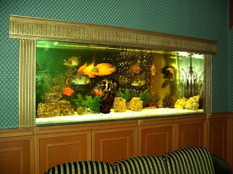 akvarium-e1398356821797