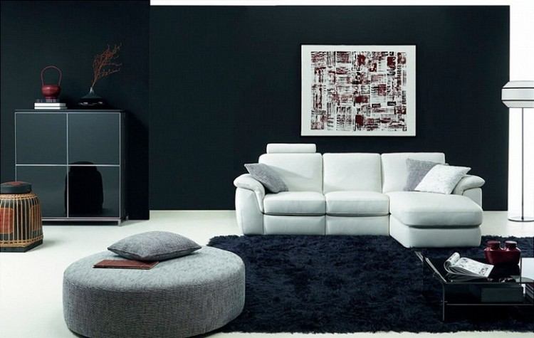 Компактный интерьер гостиной в черно-белой гамме
