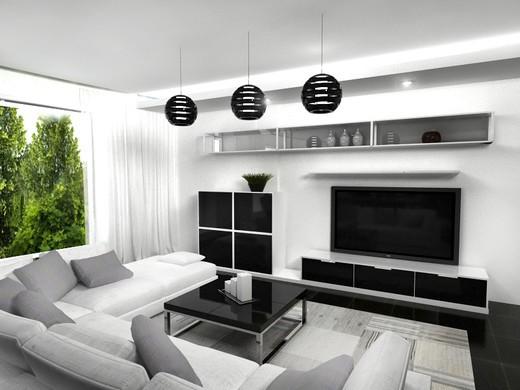 интерьер гостиной в черно белых тонах для любителей монохрома 19 фото