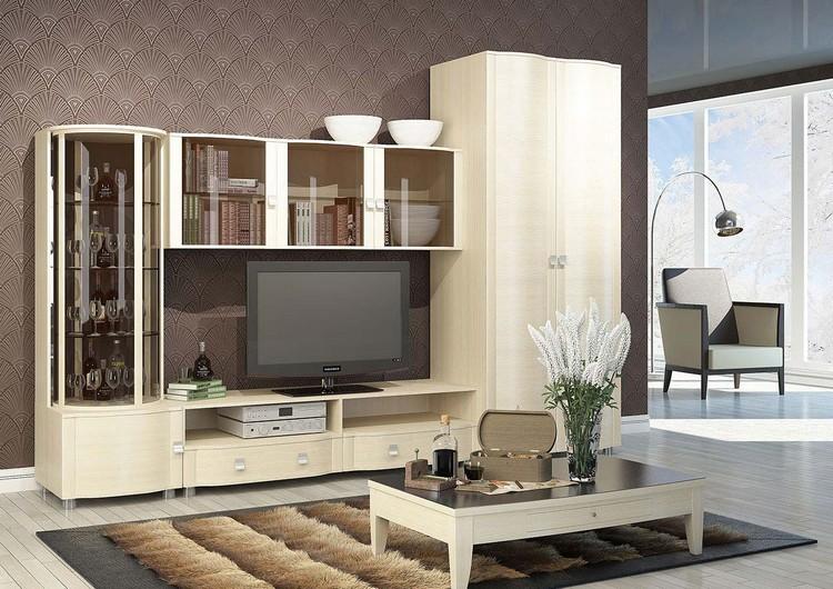 Выбираем корпусную мебель для гостиной: секреты подбора и несколько идей оформления зала (40 фото)